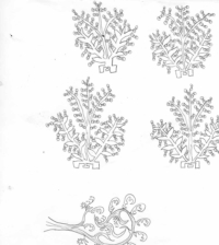 Grégoire Koutsandréou. Plante inventée 7, crayon sur papier, 25x25 cm, 2019. 150 euros
